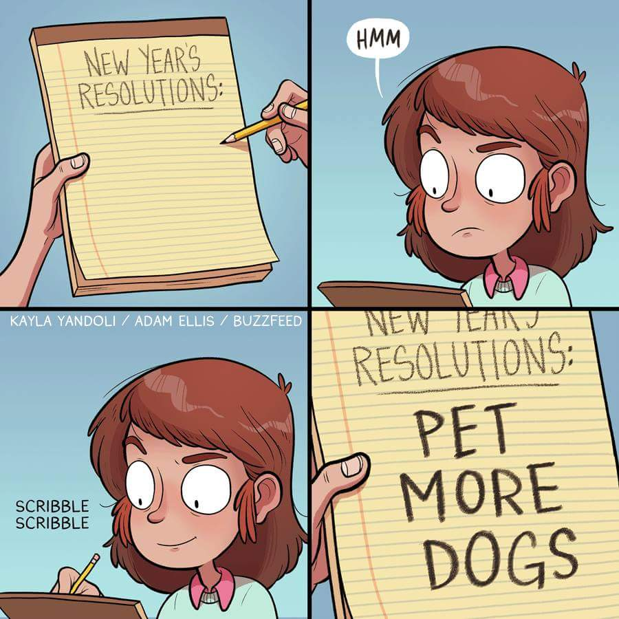 edmonton humane on twitter this newyearsresolution gets our approval pet more dogs or cats or rabbits in 2017 httpstcojhsoko3k5c