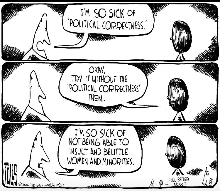 essays about political correctness