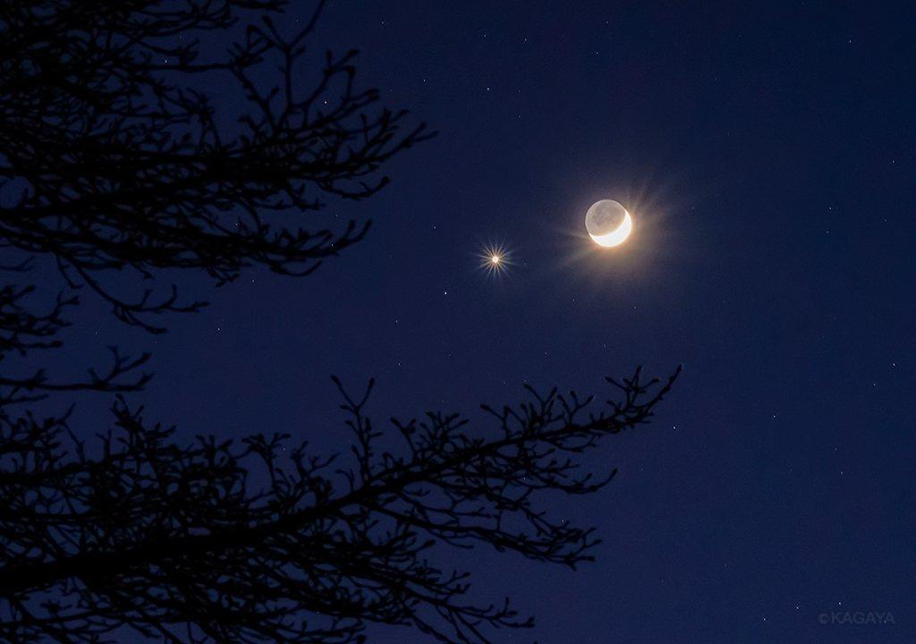 今撮影した月と金星(宵の明星)です。月の陰の部分もほのかに明るくまるく見えるのが地球照。肉眼でも見事ですが、双眼鏡をお持ちの方はぜひのぞいてみてください。これからどんどん低くなり20時頃には沈んでしまいます。 pic.twitter.com/14xbkvJ1Hv