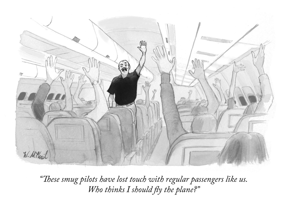 Image result for new yorker experts pilot cartoon