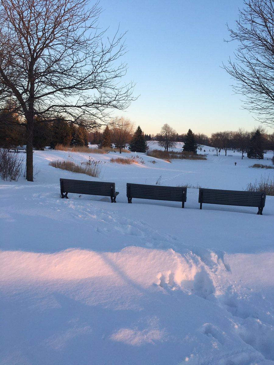 Le soleil couchant fait rosir la neige #Montréal #janvier #2017 https://t.co/KGIEkFcCqc