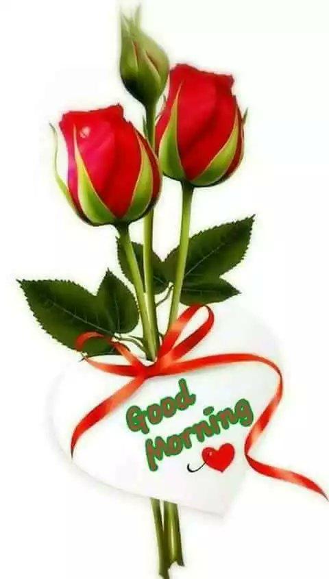 Asif Jaan On Twitter Good Morning My Lovely Friends