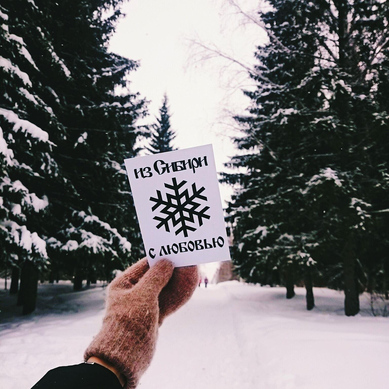 Привет из сибири открытка