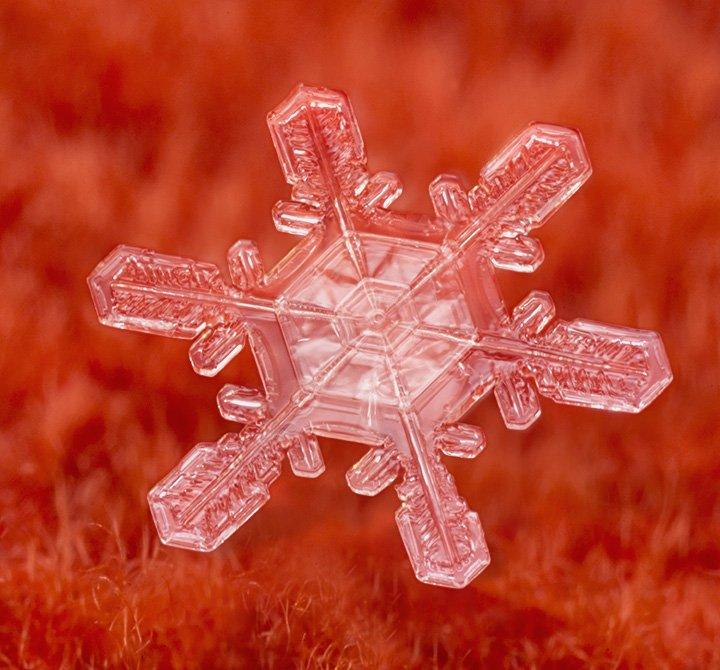 旭岳の雪。 うーむ。かっちりしていると思ったけどやっぱりテロンとしているなぁ。 もっと寒い日でないとダメか? https://t.co/AkDlQmam1S