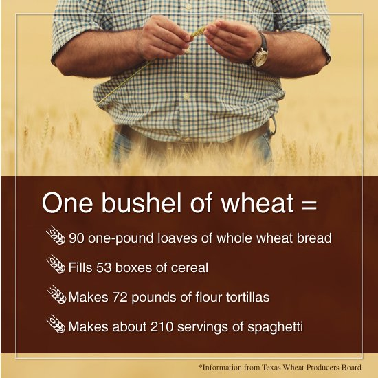 #Wheat doesn't loaf around. Just look at what one bushel makes! https://t.co/ZK2Cqqe9FA