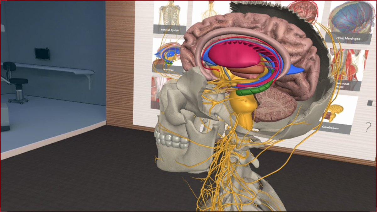 3d Organon Anatomy On Twitter Anatomymeeting This Is The Most