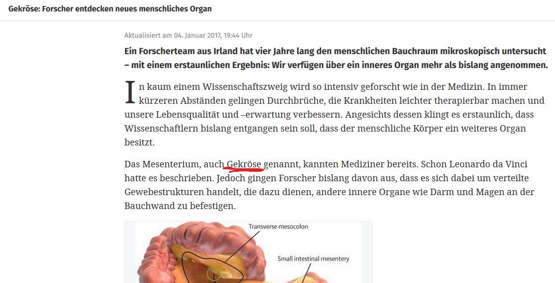 Niedlich Innere Anatomie Eines Regenwurms Bilder - Menschliche ...