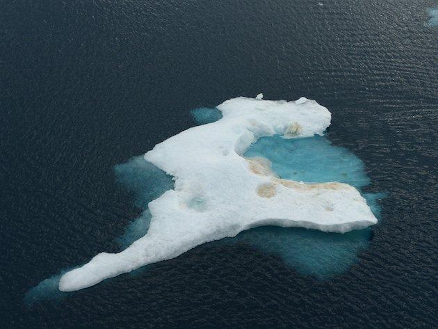 En 2040, les #ours blancs pourraient avoir disparu de la #banquise : voici pourquoi  http:// buff.ly/2ih9aKz  &nbsp;   #réchauffementclimatique<br>http://pic.twitter.com/aVWecpOJJ0