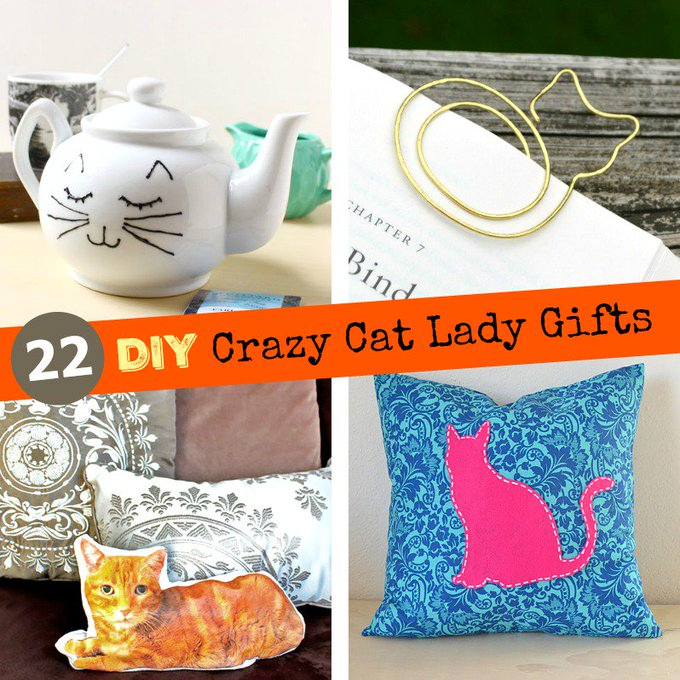 22 DIY Crazy Cat Lady Gifts : Homemade Gifts for Cat Lovers