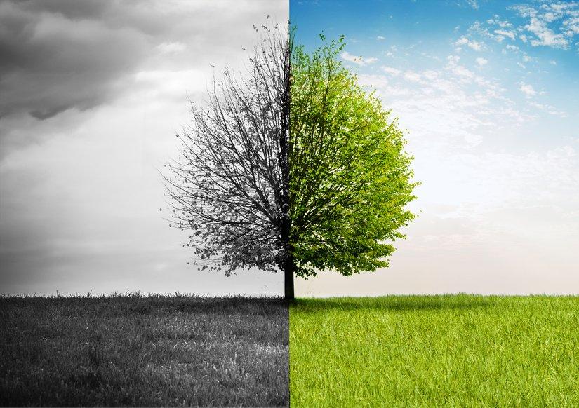 http:// ow.ly/YEiA307iB0D  &nbsp;   Face à la #crise #agricole et au-delà des plans d&#39;#aides, cherchons comment s&#39;adapter à #moyen terme. <br>http://pic.twitter.com/zAm6htGYaL