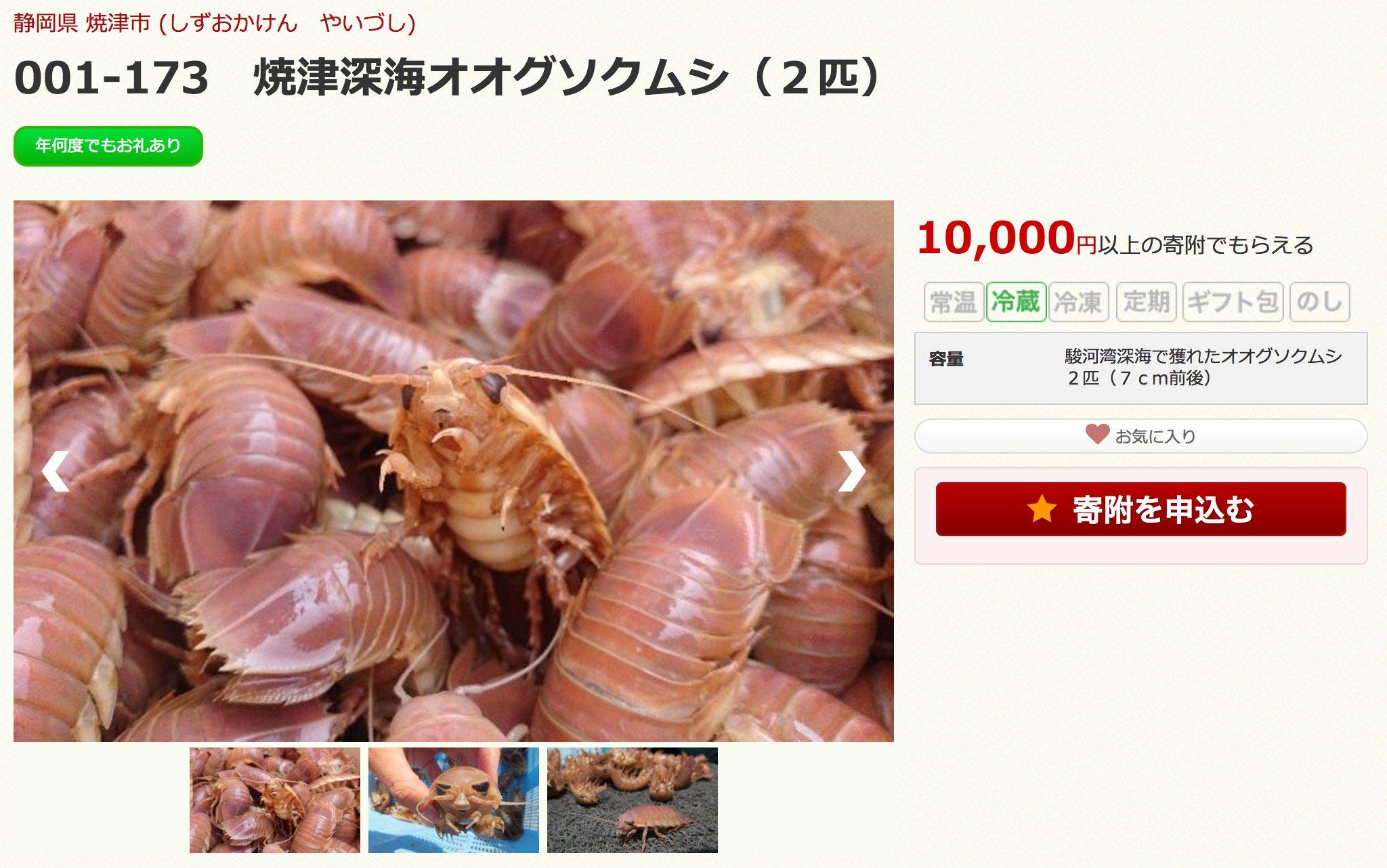 全国のグソクムシファンに朗報です。 静岡県焼津市に10000円以上のふるさと納税をすると、生きたままのオオグソクムシが送られて来るそうです。繰り返します、生きたままのオオグソクムシが送られて来るそうです。