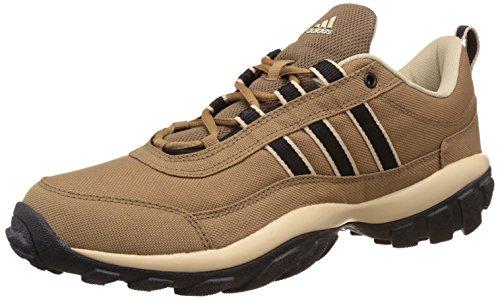Agora Multi sport Training Shoes. https