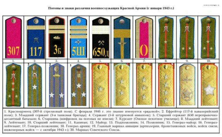 воинские звания российской армии с1943 года были видны тенденции