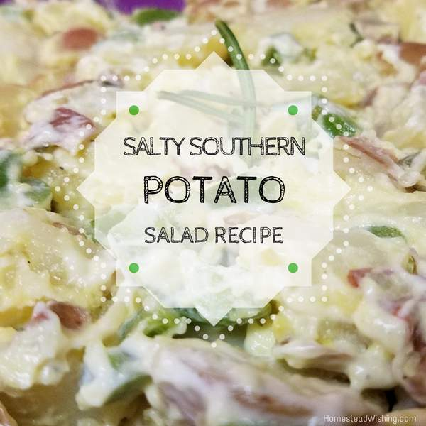 Salty Southern Potato Salad Recipe