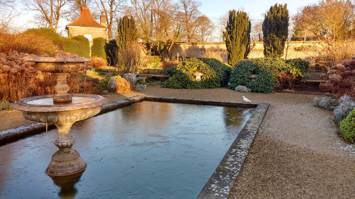 The weather's warming up so this might be the last of the icy days for a while. Ice on the White Garden pond and the moat #ice #frosty #brrr