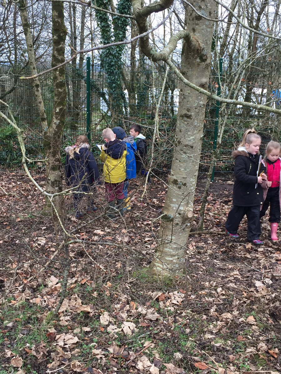 We&#39;ve had great fun starting our new topic and exploring the woods this week! #outdoorlearning #forestschools <br>http://pic.twitter.com/nBIvM0CkTC