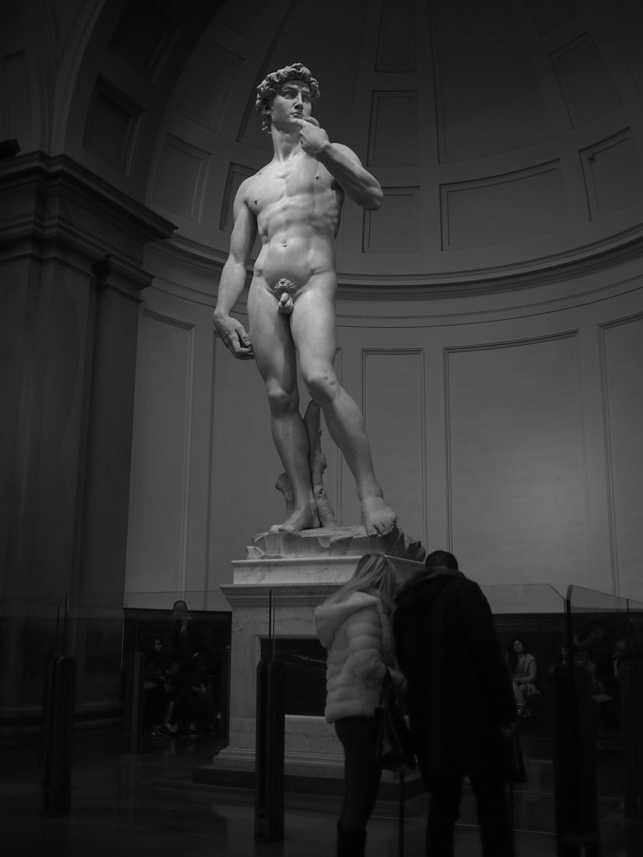 the statue of david by michelangelo a masterpiece Michelangelo's masterpiece statue david is in great danger of collapsing due to its weak ankles and the structure's 55-ton weight the cracks have become the statue's achilles heel tests carried out by italy's national research council and florence university confirmed the existence of a whole.