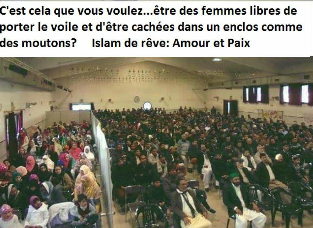 Ns respectons les coutumes de nos amis canadiens musulmans!----@JustinTrudeau  #islam #tchador #polcan #polqc #laïcité #assnat<br>http://pic.twitter.com/zWFz1fLrwO