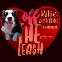 Thumbnail for #OTLFP 7th Jan 2017:  special guest @MillieOTLFP