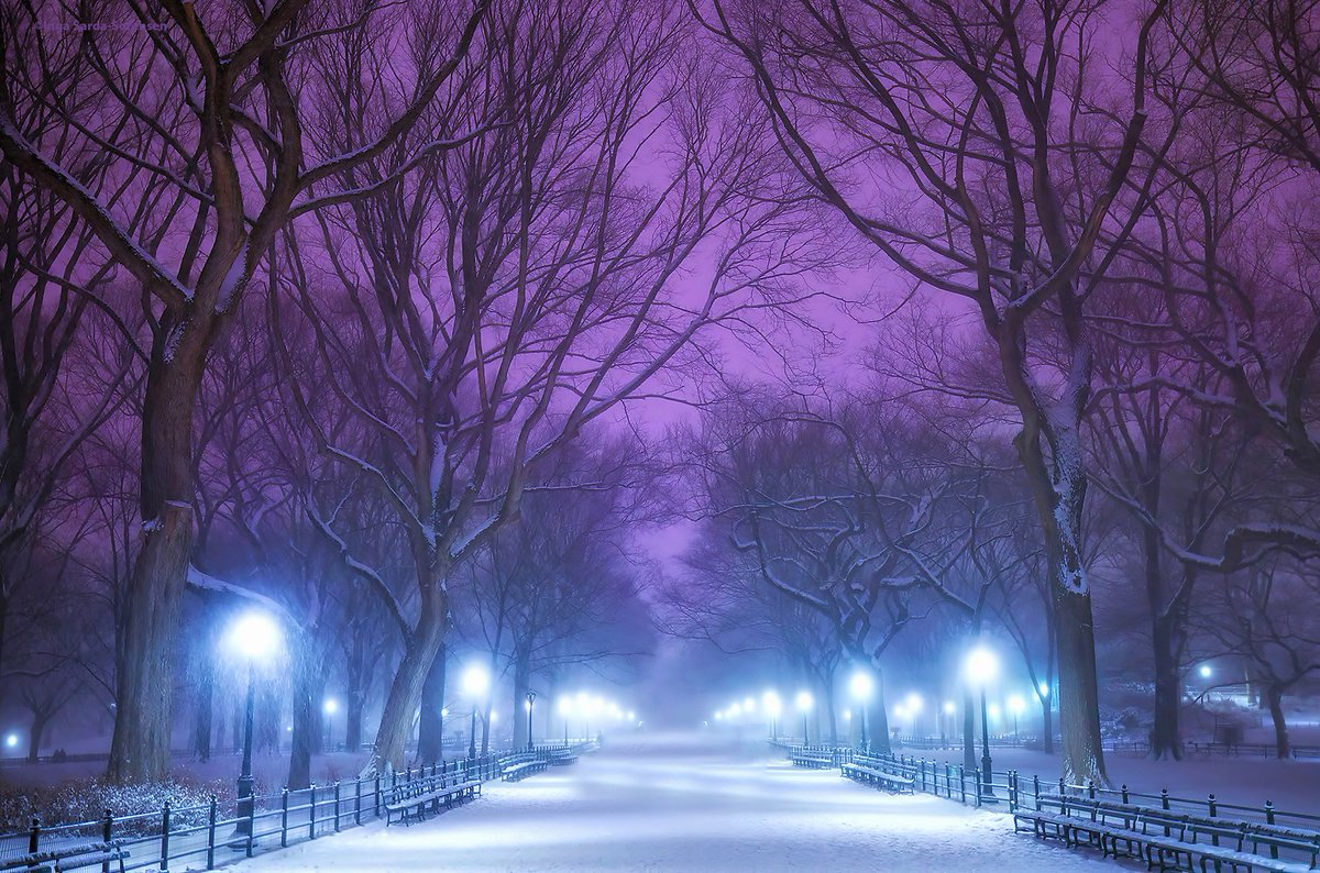 Central Park is peaceful and dreamy in tonight's #snow. #NYC #NewYork #NewYorkCity #WinterStormHelena #snow2017 https://t.co/Qci1AwSMfd