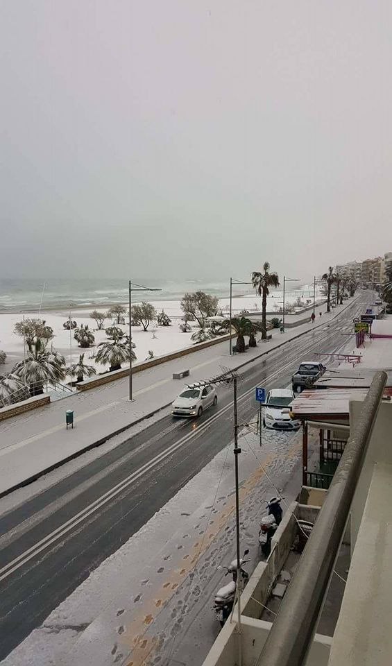 #climat Les alarmistes craignaient l&#39;arrivée des palmiers jusqu&#39;au nord de l&#39;Europe. Conséquence : la neige s&#39;invite jusqu&#39;au sud ! <br>http://pic.twitter.com/u2nziDKe4g