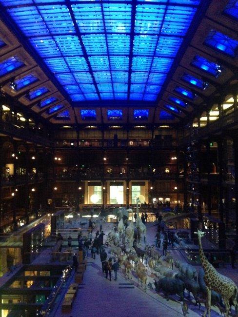 #Paris #grande galerie de l&#39;évolution #mnhn Effet pédagogique garanti pour les petits comme les grands !<br>http://pic.twitter.com/UkXJebbgbv