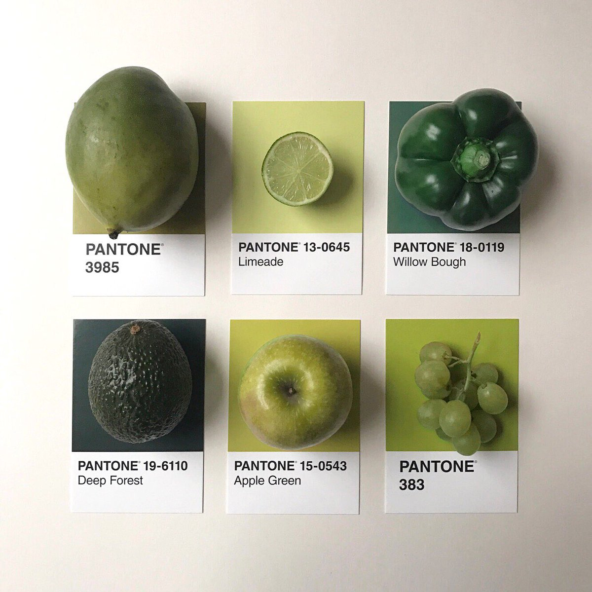 PANTONE 15-0343 #Greenery is the Color of the Year - but we love all greens 🍏  📷: Tom Lowe