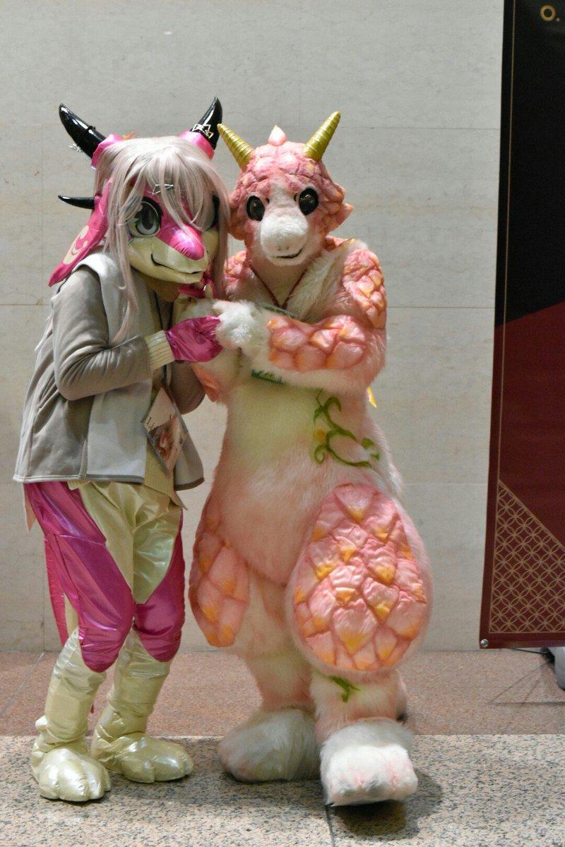 昨夜ピューレで玉竜さん(@tamanezumi )の所のLinoちゃんとピンクドラゴンツーショ撮れて良かった!鼻キス可愛い!! https://t.co/OVGcO3TS2I