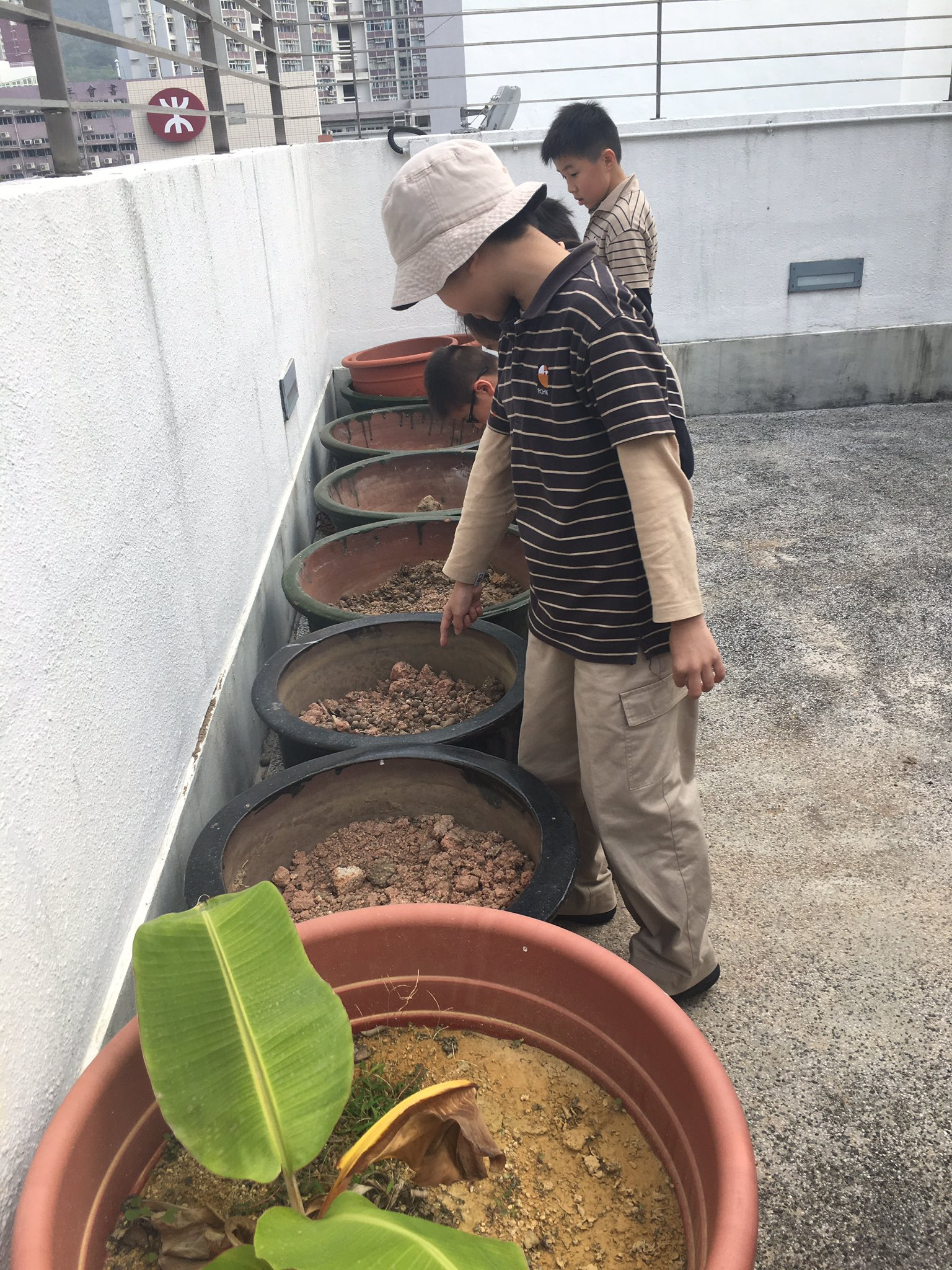 @RESVTlibrary we have pots for planting now! #awesome3LT #rchkpyp https://t.co/f2pmFYDszQ