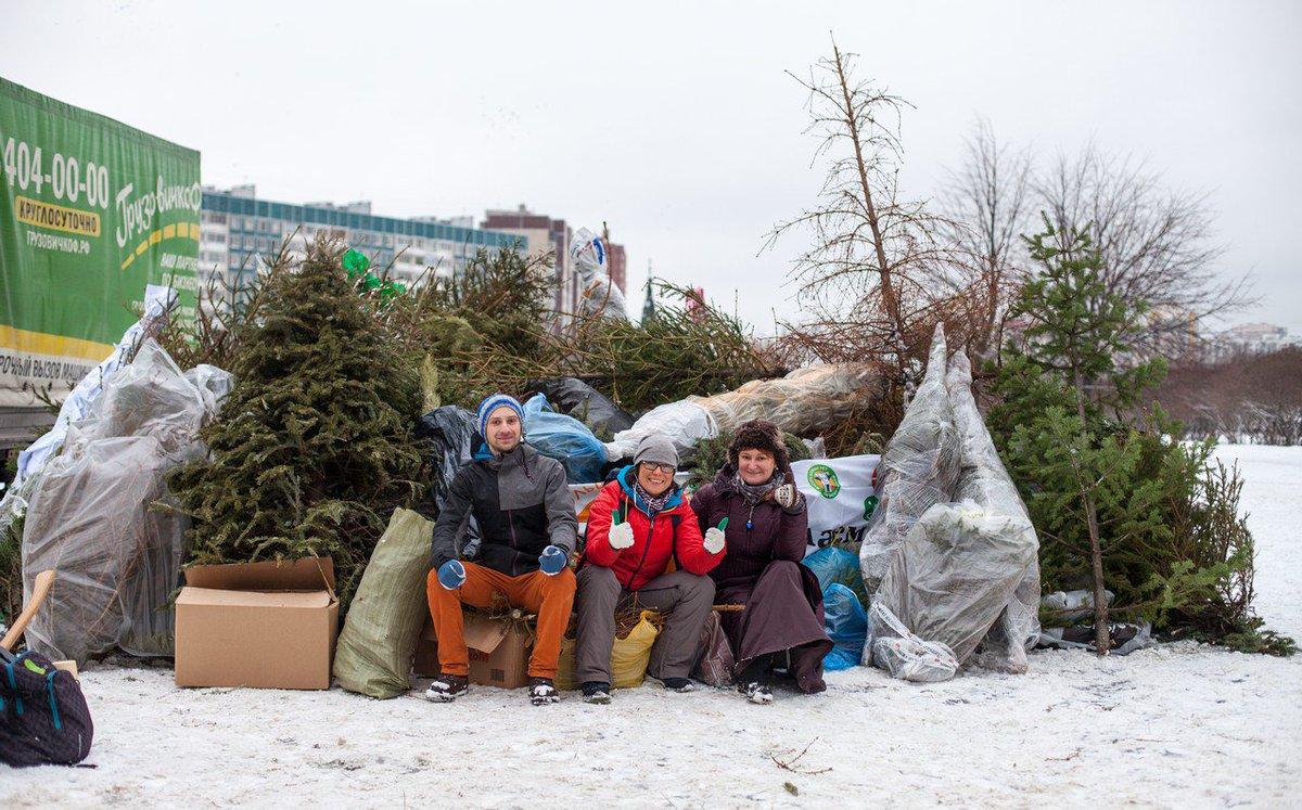 Где сдать елку в Москве карта