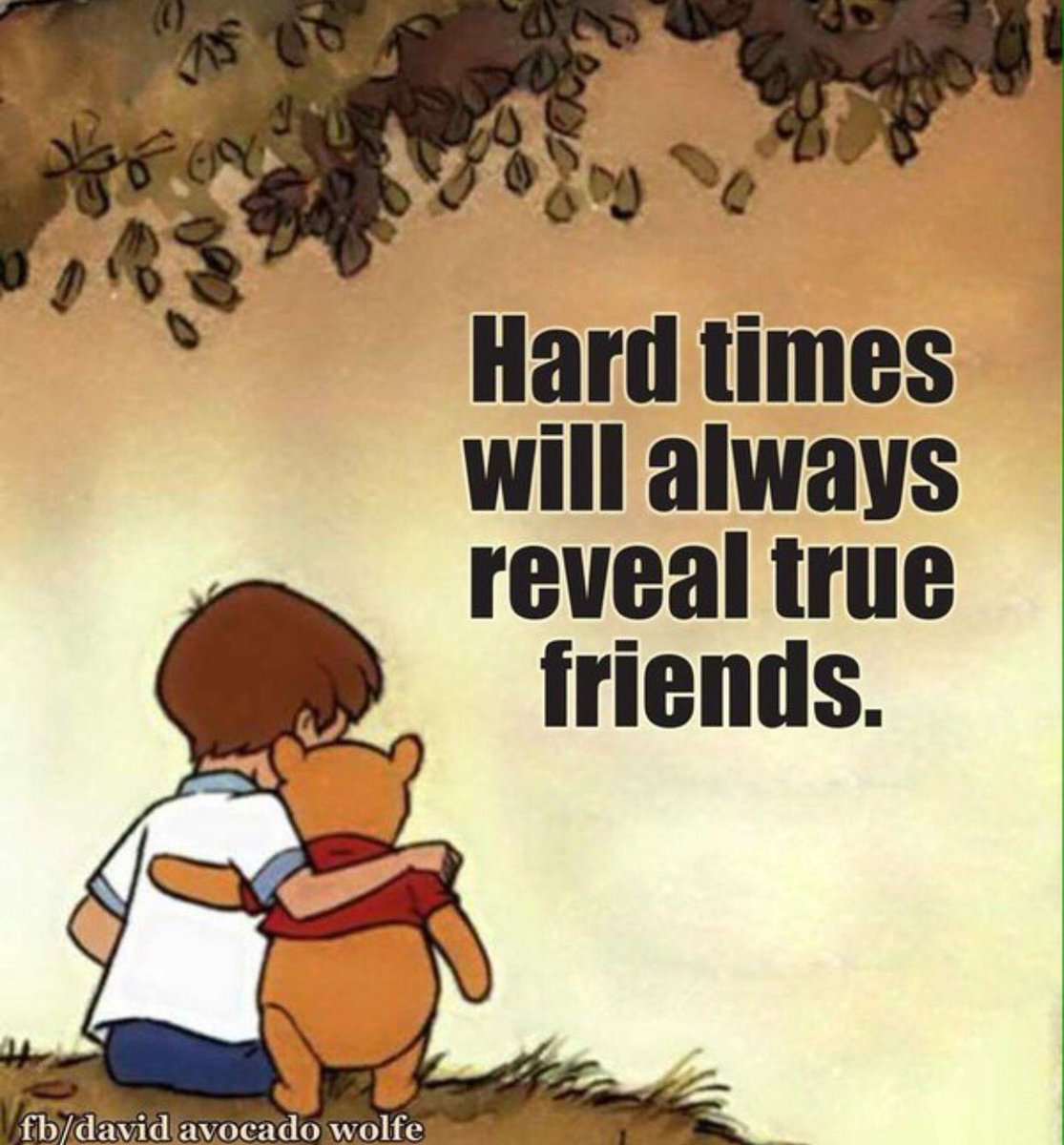 Friendship Quotes For Friends Going Through Hard Times : Wright thurston on twitter quot hard times will always reveal