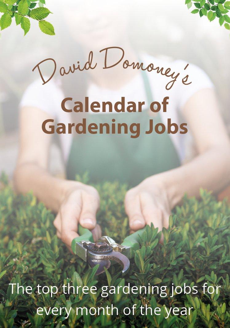 Garden gift vouchers gardengiftvouch twitter for Gardening gift vouchers