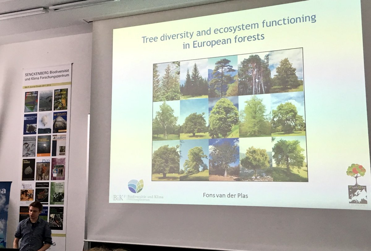 Next up @bik_f_ : @fonsvanderplas on #diversity of #trees &amp; #ecosystemfunctioning in European #forests <br>http://pic.twitter.com/S2KlPtyNh0