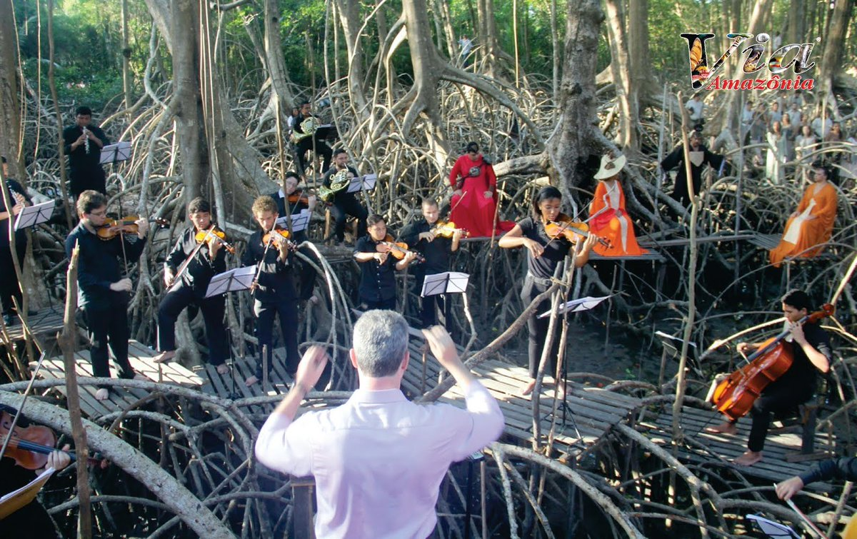Banquete Ópera Festival no Marajó !!!  https:// goo.gl/tihNvJ  &nbsp;    #viaamazonia #TerçaDetremuraSdv #forest #journeemondialedelaCorse <br>http://pic.twitter.com/C5hKvSIK8p