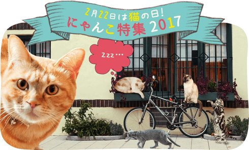 にゃー  2月22日は猫の日! ニコニコが「にゃんこ特集」2017を開催 猫写真コンテストではにゃん…