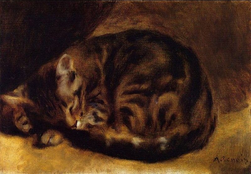 #MewseumMonday  #Renoir - Sleeping Cat, Private collection, 1882