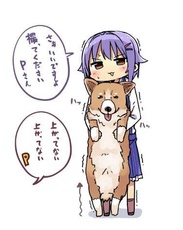 幸子とコーギー (幸子リク01)