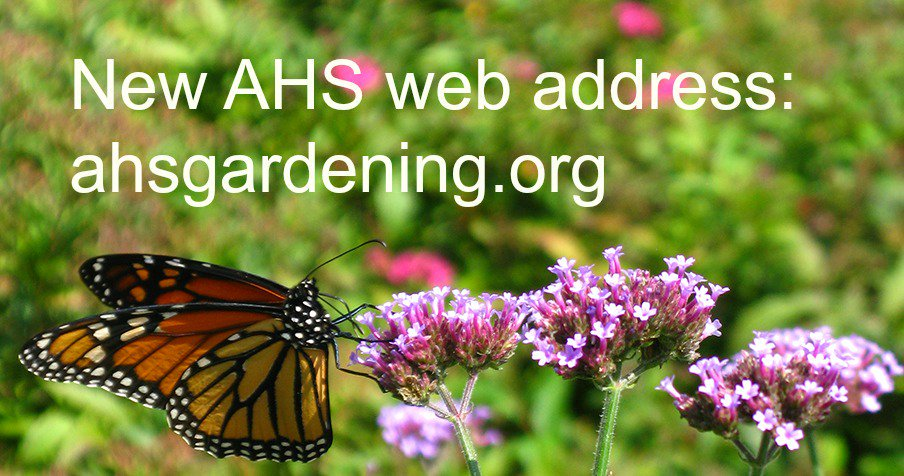 Hey #plantchat pals, if you link to us please update our domain name to https://t.co/D1ld1o5vcv https://t.co/dqYwNpD279
