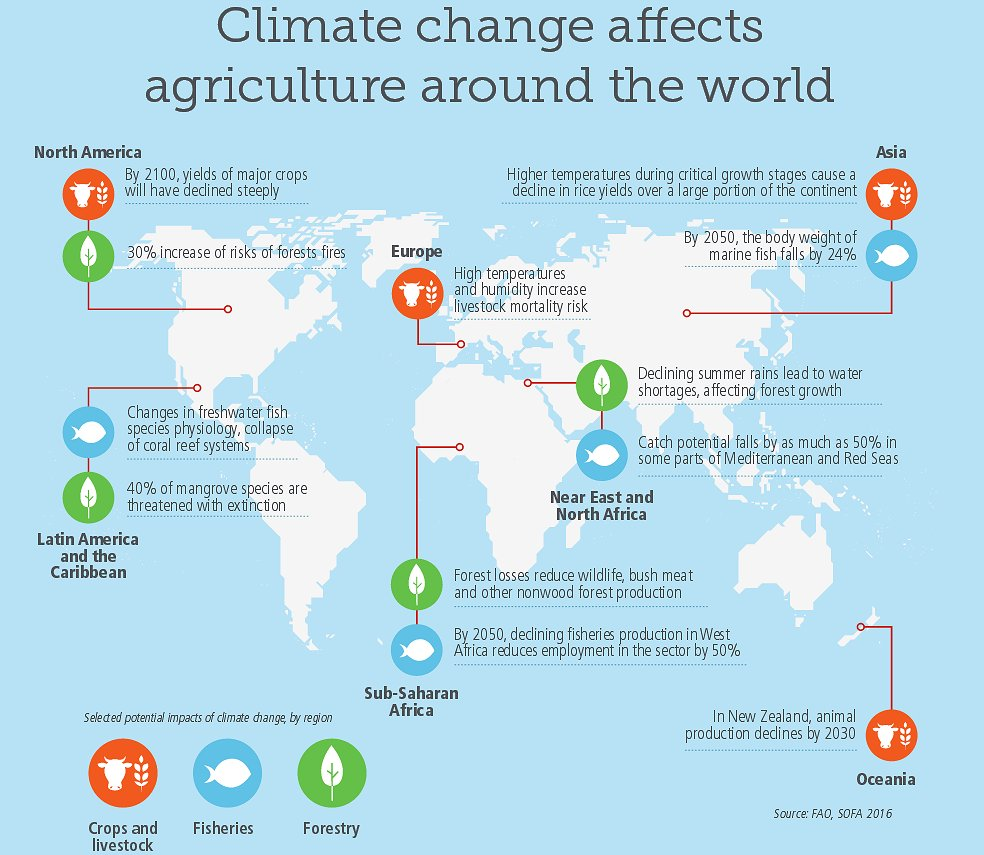 The effects of #climatechange on agriculture around the world https://t.co/qP6jrYSjib https://t.co/pzQtQhPgMT via @FAOnews