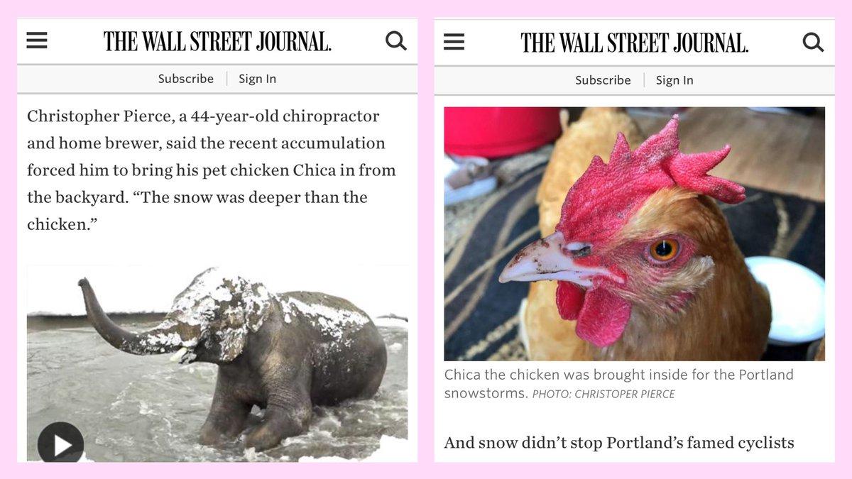 Hey @WSJ, I know that chicken. #PDXsnowpocalypse CC: @TheUnipiper   http://www. wsj.com/articles/oh-no -its-snowing-whats-poor-portland-to-do-1485190002?emailToken=JRrzcv9zaXqVh9Qya8w71BguaewJF/TMXVXQM3HMNQ3TtHXJuqe5wKIvwsOwu3+rTEB2oswDqmI4AGSN0DczDZfJw+Q= &nbsp; … <br>http://pic.twitter.com/hLukKIrXYU