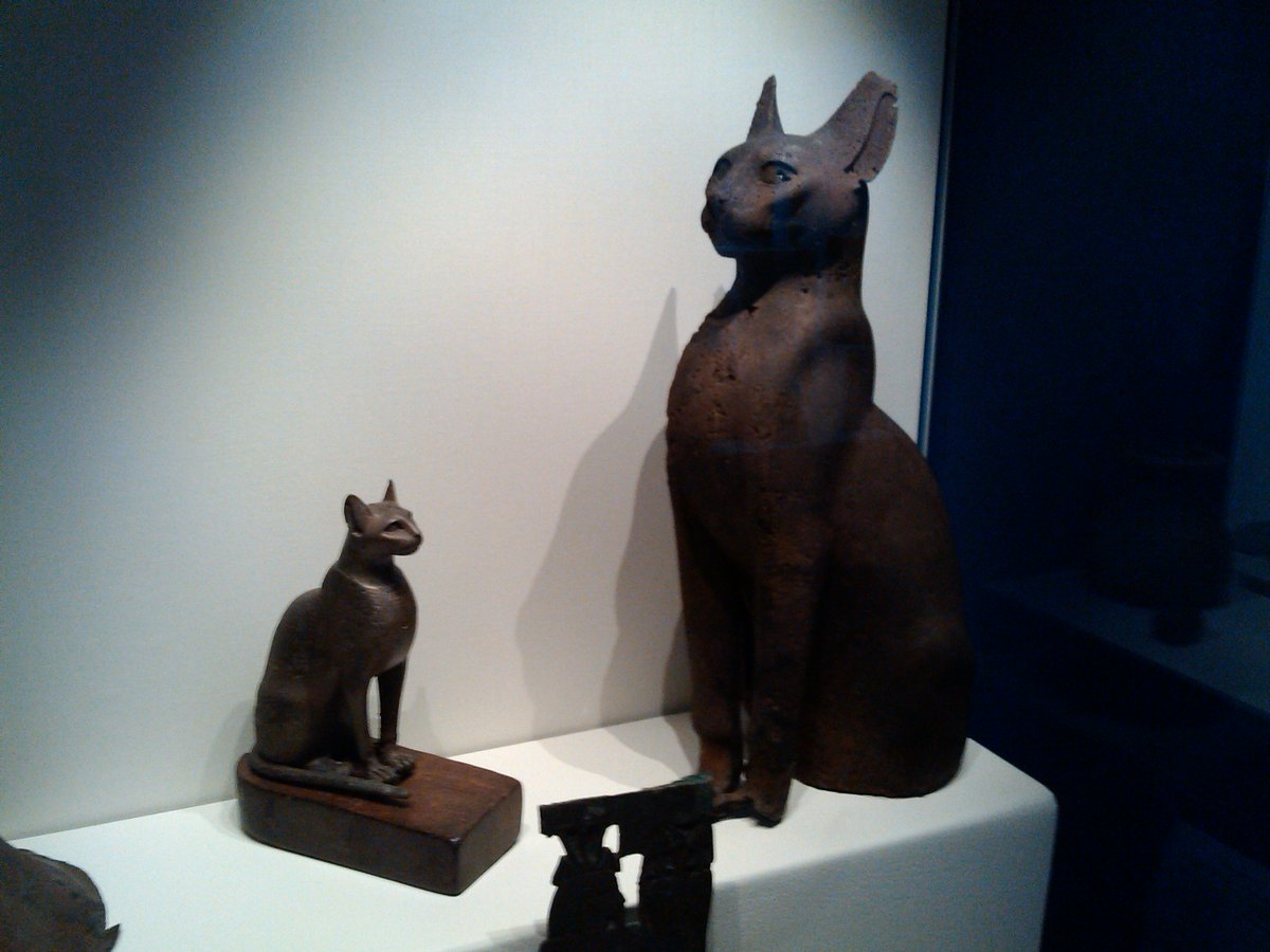Spotted these cats in the Oriental Museum in Durham the other day! @dumuseums #MewseumMonday