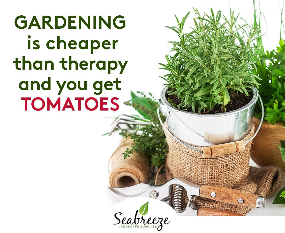 RT https://t.co/pWnO2zQLsn Gardening is cheaper than #therapy and you...