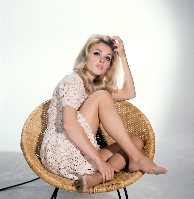 Happy Birthday to Sharon Tate, who would have turned 74 today!