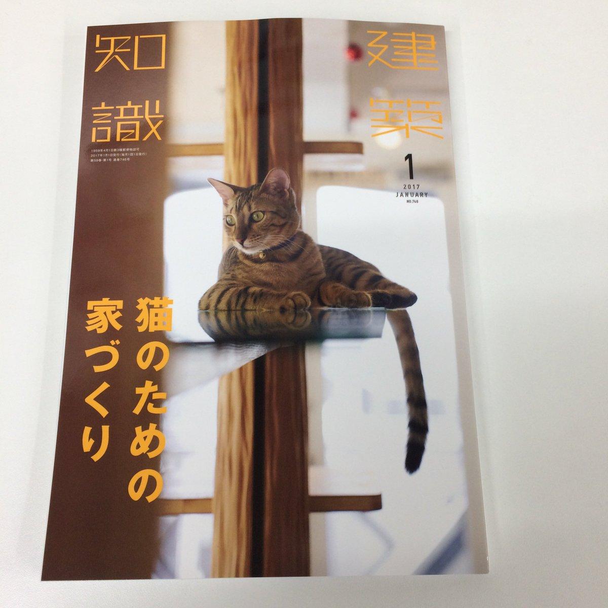 「建築知識 1月号」 建築の専門誌なのに、今月号は「猫:建築 = 7:3」くらいの感じw