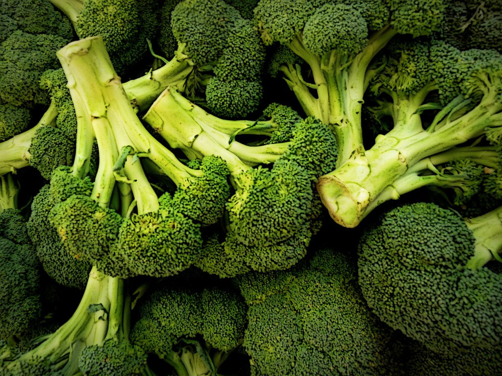 Gardening tip Tuesday. . . Broccoli, Brussel Sprouts and Leeks can all...