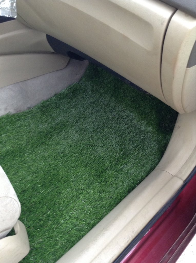Made Turf Floor Mats For My Car