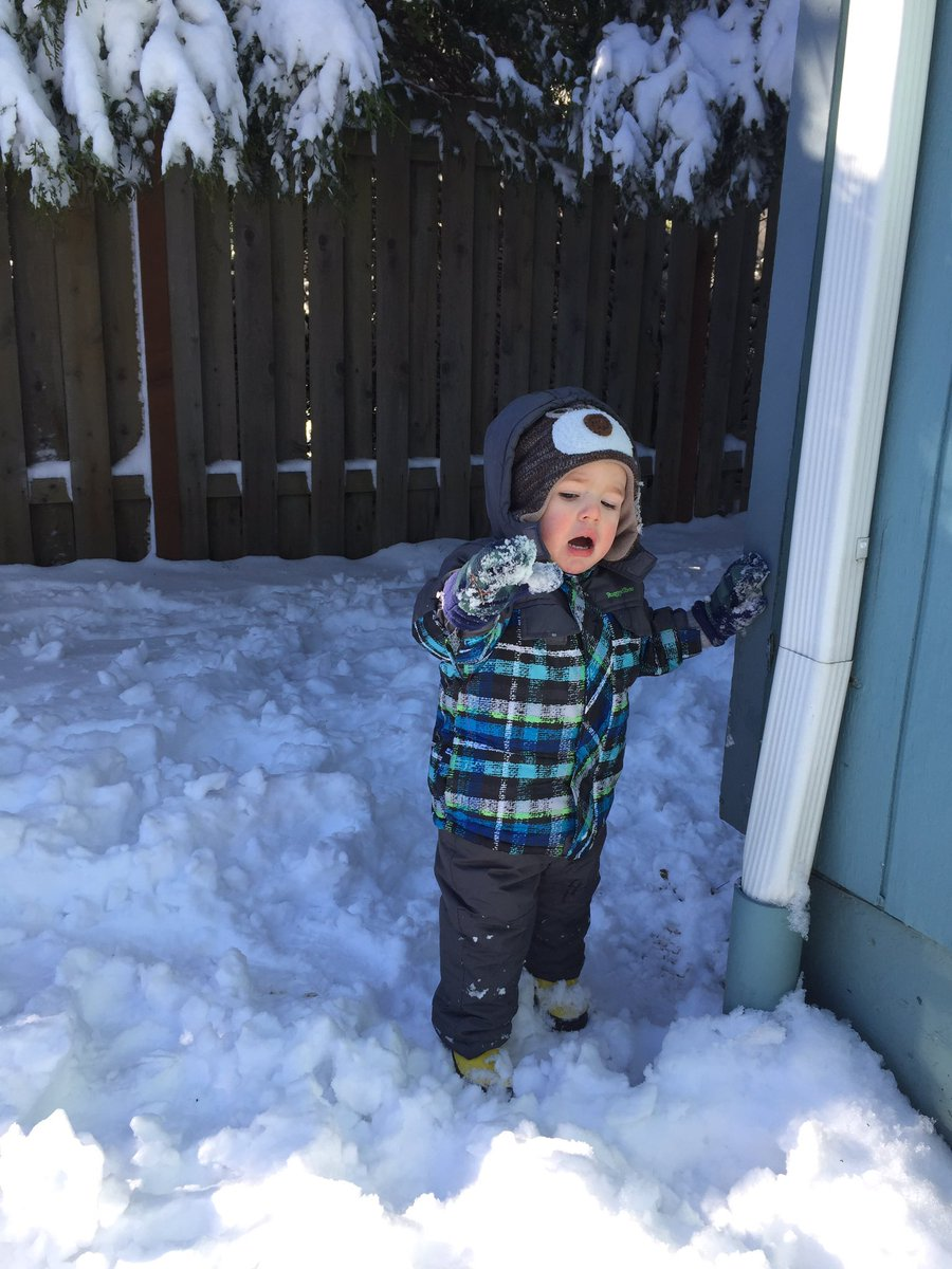 #PDXSnowday #7 wherein I let my kids to fend for themselves in the wilds of the yard &amp; my 4yo ate sour cream for lunch. #momlife<br>http://pic.twitter.com/1spjqcLUn9