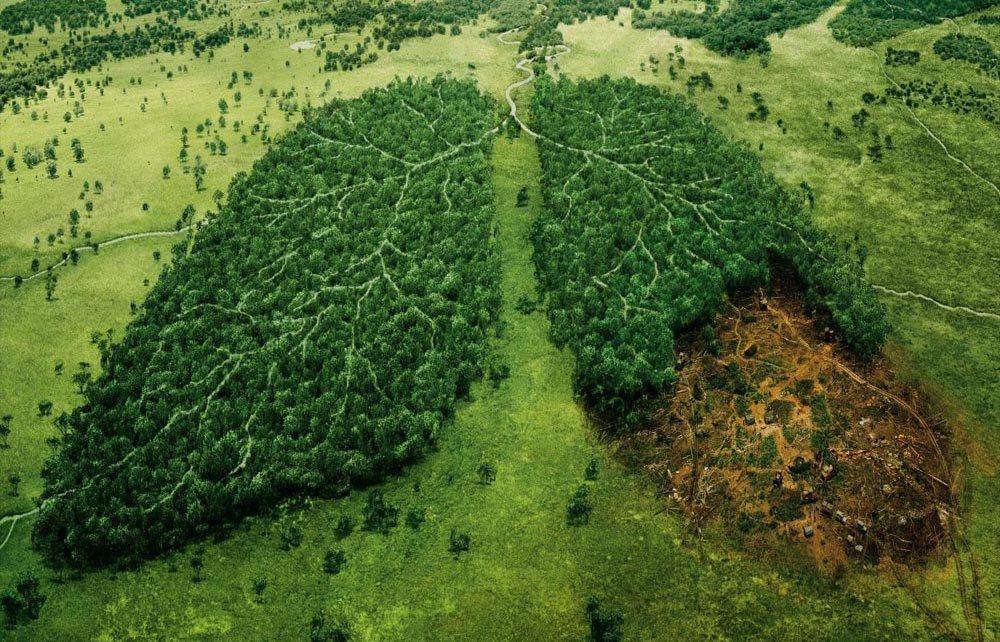#awareness #environment # pollution  https:// goo.gl/9juluv  &nbsp;  <br>http://pic.twitter.com/VqbVGh82bk
