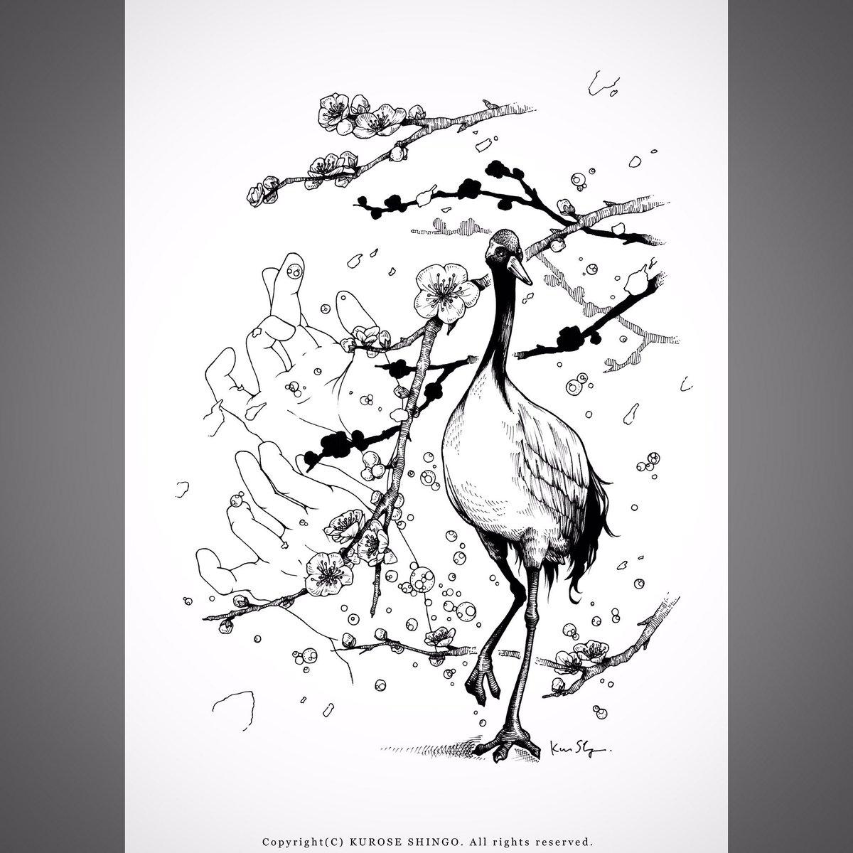 """クロセシンゴ on twitter: """"花鳥 梅と丹頂 2017睦月 #絵 #イラスト"""