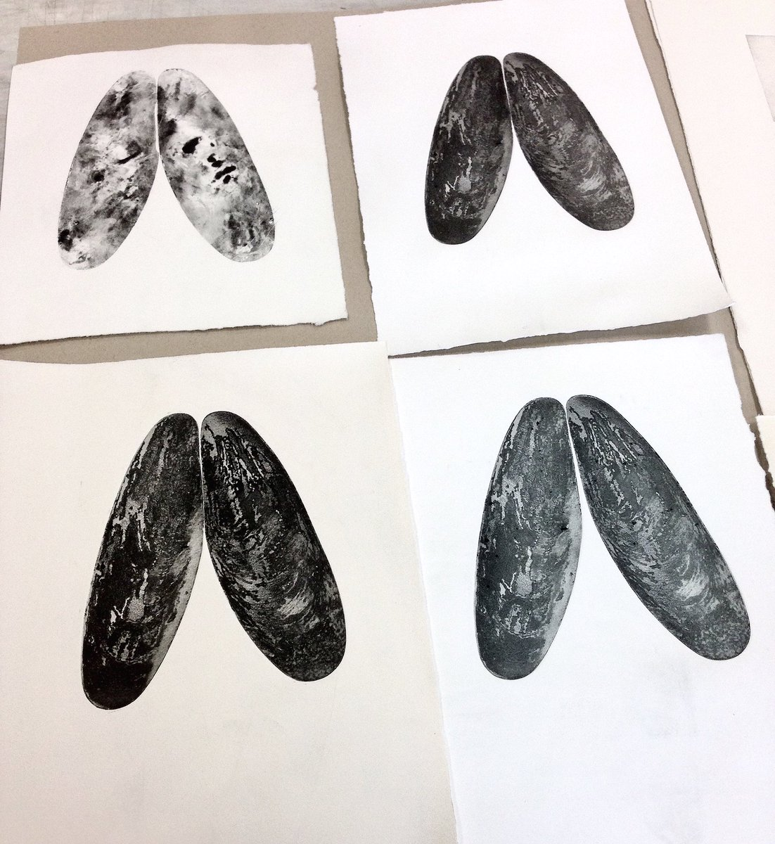 Some prooves of the mussel~ #etching #printmaking #grabado #mussel #mejillon<br>http://pic.twitter.com/pPWOwS9MJG